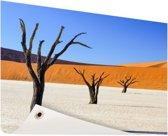Boompjes in woestijn Tuinposter 120x80 cm - Tuindoek / Buitencanvas / Schilderijen voor buiten (tuin decoratie)