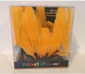 SF Fluo plant fern oranje