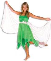 Elfen jurk voor dames 36 (S)