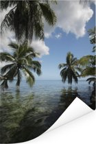 Palmbomen op een strand in Moorea in Oceanië Poster 120x180 cm - Foto print op Poster (wanddecoratie woonkamer / slaapkamer) XXL / Groot formaat!