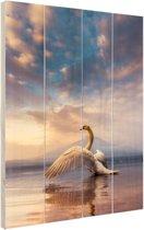 Opstijgende zwaan Hout 80x120 cm - Foto print op Hout (Wanddecoratie)