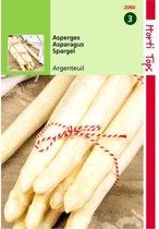 Asperges Argenteuil - Asparagus officinalis - set van 8 stuks