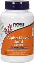 Alpha Lipoic Acid 250mg Now Foods 120v-caps