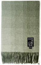 plaid alpaca ruiten groen botanisch groen