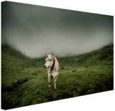 FotoCadeau.nl - Koe in berggebied Canvas 120x80 cm - Foto print op Canvas schilderij (Wanddecoratie)
