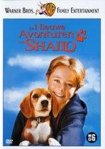 Shailo 2 - Nieuwe Avonturen (dvd)
