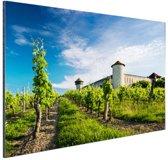 Wijngaard in Bordeaux Frankrijk Aluminium 180x120 cm - Foto print op Aluminium (metaal wanddecoratie) XXL / Groot formaat!
