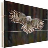 Een oeraluil met wijd gespreide vleugels Vurenhout met planken 120x80 cm - Foto print op Hout (Wanddecoratie)