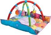 Taf Toys Babygym Activiteiten Gym newborn – extra zachte speelmat met afneembare bogen diverse speeltjes– 0 tot 24 maanden