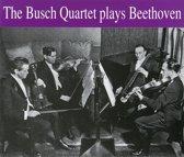 Busch Quartet Plays Beethoven