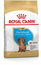Royal Canin Dachshund Junior - Hondenvoer - 1,5 kg