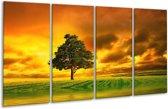 Glasschilderij Natuur   Groen, Bruin, Wit   160x80cm 4Luik   Foto print op Glas    F002904