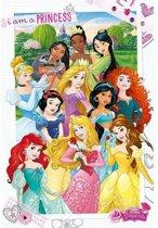 Poster Disney prinsessen 61 x 91,5 cm