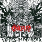 Voices In My Head