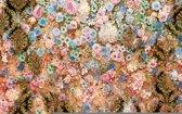 Fotobehang Flowers Colour Design | XXXL - 416cm x 254cm | 130g/m2 Vlies