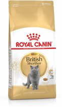 Royal Canin British Shorthair Adult - Kattenvoer - 4 kg