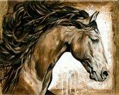 Horka Wenskaart Met Paard 12,5 X 18 Cm