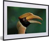 Foto in lijst - Dubbelhoornige neushoornvogel met een groene achtergrond fotolijst zwart met witte passe-partout 60x40 cm - Poster in lijst (Wanddecoratie woonkamer / slaapkamer)