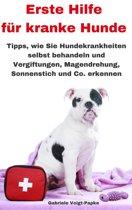 Erste Hilfe für kranke Hunde