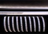 KapegoLED Flexible LED stripe, 335-120-24V-6500K-3m, coldwhite, constant voltage, 24V DC, power / power consumption: 28,80 W / 28,80 W, length: 3000 mm, EEC: A, IP20