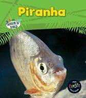 Dieren in beeld - Piranha