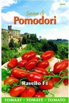Tomaten Pomodori Ravello F1 Lycopersicon esculentum - 5 sets