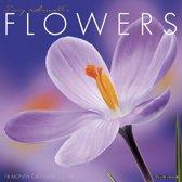 Flowers 2019 Wall Kalender