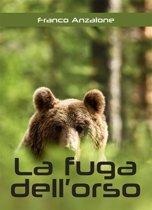 La fuga dell'orso