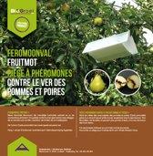 Feromoonval Fruitmot
