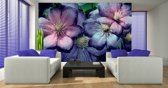 Violet | Pink Photomural, wallcovering