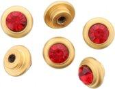 6 gouden schroefjes met rode diamant erop.