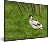 Foto in lijst - Kluut tussen het groene gras fotolijst zwart 40x30 cm - Poster in lijst (Wanddecoratie woonkamer / slaapkamer)