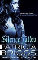 Omslag van 'Silence Fallen'