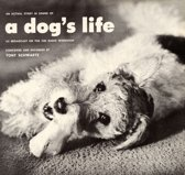 An Actual Story in Sound of a Dog's Life