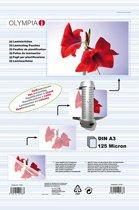 1x25 Olympia Lamineerfolie DIN A3 125 micron