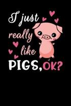 I Just Really Like Pigs, Ok?: Pig Notebook