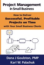 Project Management in Small Business: How to Deliver Successful, Profitable Projects on Time with Your Small Business Clients