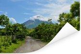 Weggetje richting de vulkaan op het eiland Ometepe Poster 90x60 cm - Foto print op Poster (wanddecoratie woonkamer / slaapkamer)