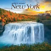 New York Wild & Scenic 2020 Mini 7x7