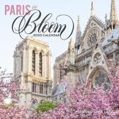 CAL 20 PARIS IN BLOOM