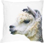 canvas kussen baby alpaca grey 50x50cm