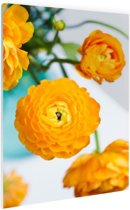 Oranje boterbloemen Glas 80x120 cm - Foto print op Glas (Plexiglas wanddecoratie)