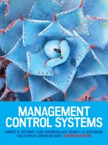Management Control Systems