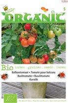 Buzzy® Organic - Balkontomaat Koralik (BIO)