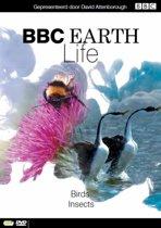 BBC Earth - Life: Deel 8