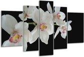 Glasschilderij Orchidee | Wit, Zwart, Geel | 170x100cm 5Luik | Foto print op Glas |  F000403