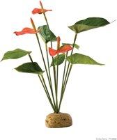 Exo Terra Rainforest Plant Anthuriumbush per stuk