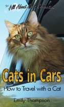 Cats in Cars: How to Travel with a Cat