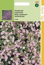 Hortitops Zaden - Saponaria Ocymoides (Zeepkruid) Rose