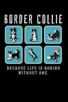 Border Collie, Because Life Is Boring Without One: Blank Lined Journal, 6 x 9